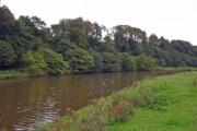 Kingsley - River Weaver near Catton Hall