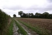 Farmland east of Hambledon