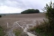 Ploughed field near Hambledon