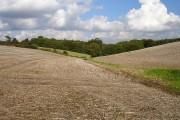 Valley near Kenylon Farm