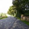 Entrance driveway to Leconfield Grange