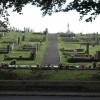 Cemetery Through Trees