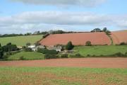 Shobrooke: towards Coombe Barton