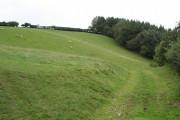 Stockleigh English: track to Binneford Plantation