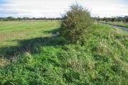 West of Burton Fleming