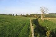Farmland near Brownmoor