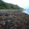 West shore of Loch Fyne