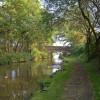 Approaching bridge no. 29, Macclesfield Canal