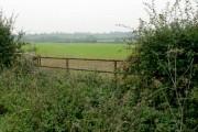 Farmland by Lings Lane