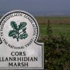 Llanrhidian Marsh