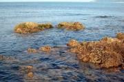 Rocky shore at Ballantrae