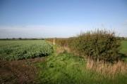 Farmland near Yawthorpe