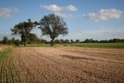 Farmland towards Harpswell Grange