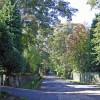 Disley: Red Lane