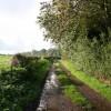 Footpath near Bathleyford Bridge