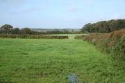 Cruwys Morchard: near Pulsards Farm