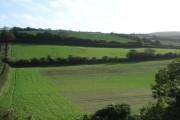 Fields south of Carisbrook Castle, IOW