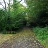 Pratthall Lane near Holehouse Farm