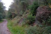 Evidence of mining in Boringdon Park Wood