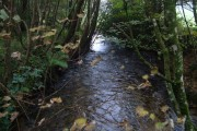 Piall river from Stert Bridge