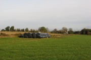 Silage store, West Tofts
