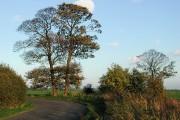 Marsh Road, Keyingham