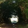East Worlington: near Cuddenhay Moor
