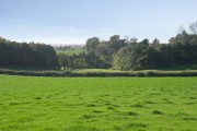 Farmland at Groby Park Farm