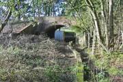 Boardwalk under disused railway bridge Alderholt Dorset