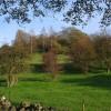 Beardsley Plantation