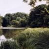 Digswell Lake