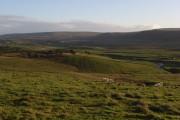 Fields, Langdon Beck