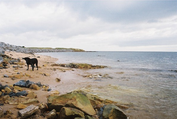 Sea defences next to Royal Dornoch golf course