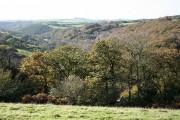 Bratton Fleming: near Holywell