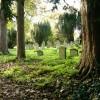 Graveyard at Hardmead Church