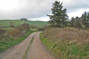 Bridleway near Thorpe Bulmer Farm