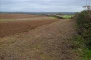 Higher Spriddlestone from Polston