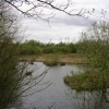 Rixton Clay Pits Nature Reserve