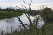 RiverDee/Afon Dyfrdwy