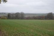 Farmland south of Long Crichel