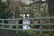 The River Ecclesbourne near Windley