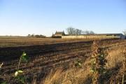 South Berrington Farm