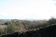 Chardstock: near Cotley Wash
