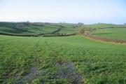 View to Pond Farm