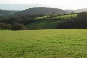 Across the valley to Trewarne Wood