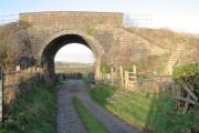 Rail bridge over farm lane, Loughor estuary