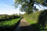 The Lane From Cranworth