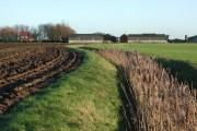 Keyingham Marsh