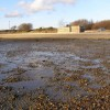 Southampton Water foreshore at low tide, Hamble Common