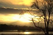 River Earn Flood Plain